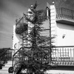 12 - Villa Scafa in loc. Colle Romito a Tor San Lorenzo, Ardea (RM) - Vista esterna