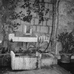 15 - Ristrutturazione di androne e vialetto in via Canzone del Piave, Roma - Vista di dettaglio della fontana