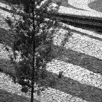16 - Piazza con monumento commemorativo a Tuscania (VT) - Vista di dettaglio della pavimentazione